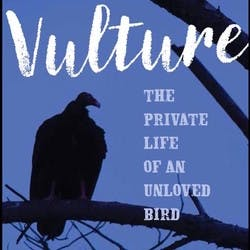 Cover for Vulture